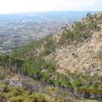 15 de DICIEMBRE 2019 Ruta senda el Barrio-Muñequeras (Mijas)