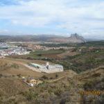 12 de ABRIL 2020 Hacho de Antequera Lomas de las Ventas (Antequera )