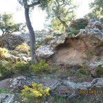 28 de ENERO 2018. Visita geológica los taffonis de Peña de Cabrera (Casabermeja)
