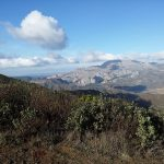 1 de OCTUBRE 2017. Borde norte de Sierra de Aguas. Hoyón de Lobo (Álora)