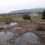 21 de ABRIL 2019 Por los Llanos y dehesas de Archidona