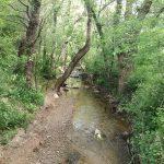 23 de ABRIL 2017. Paseo por fondo de valle Hoz de Marín (Archidona)