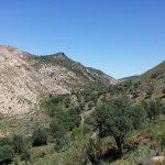 24 de SEPTIEMBRE 2017 . Ruta circular Cuesta el Romeral (Antequera). Aula museo de Geología