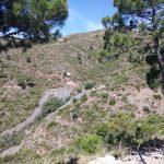 22 de OCTUBRE 2017. Nueva visita subterránea mina la Gallega II  (Ojén)