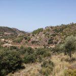 3 de MARZO  2019 Minas de Borbollones y Casillas de Galván (Salinas-Archidona)