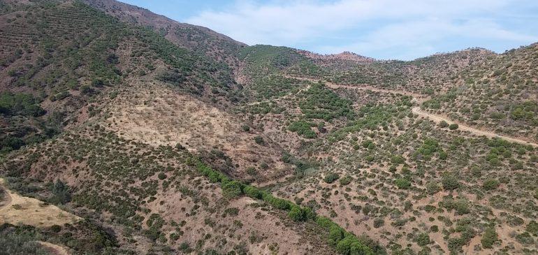1 de Octubre 2017. Borde norte Sierra Aguas (Álora). Hoyón de Lobo. Aula museo de geologia Málaga