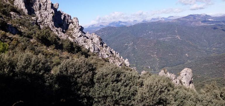 5 de Noviembre 2017. Ruta por la Sierra Crestellina (Casares). Aula museo de geologia Málaga