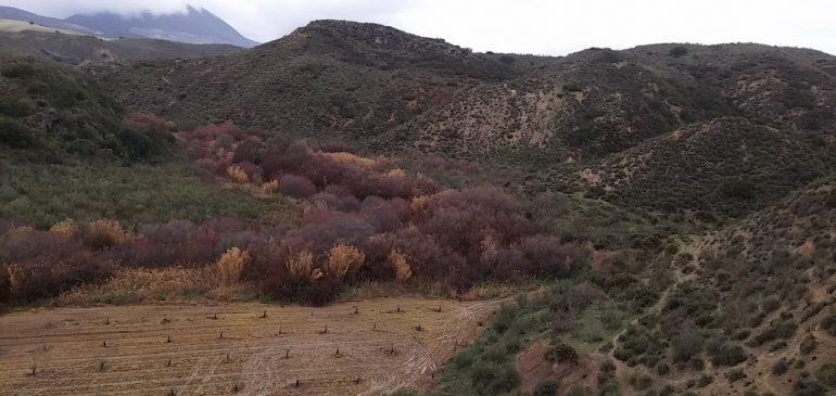 14 de Enero 2018. Ruta Almargen-Rio Corbones. Aula museo de geologia (Málaga)