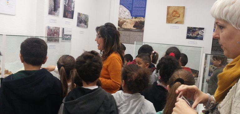 21 de Febrero 2018. Visita CEIP Ntra Sra. de Gracia al Aula museo de geologia (Málaga)