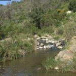9 de ABRIL 2017. II Jornada de bateo aluvial en Río Real de Ojén
