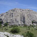 30 de ABRIL 2017. Sierra de Camarolos-Nacimiento río Guadalmedina