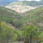 21 de ENERO 2018. Ruta Mina el Gallego-Sierra de Aguas (Carratraca)