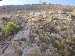 Coluviones calizos antiguos e inestables fosilizados por arenas y limos Pliocenos. Acceso a Pinares de San Antón