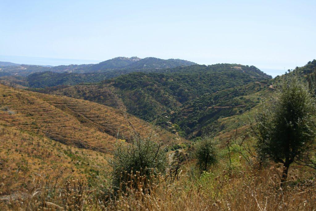Cuenca del arroyo Linarejos desde Juana Diaz.  Al fondo Elviria