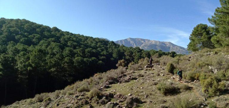 29 de Diciembre 2019. Por la Alcaiceria-Camino del Robledal de Sierra Tejeda (Alhama de Granada). Aula museo de geologia