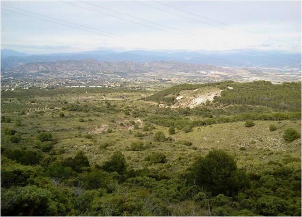 Llanos de la Plata vista Sierra Mijas