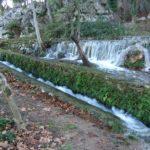 23 de FEBRERO 2020 Por los Llanos de Zajarillas y nacimiento de Cuevas del Becerro