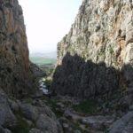 29 de MARZO 2020 El cañón del Tajo del Molino (Teba)