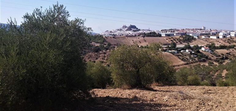 8 de Octubre 2017. Ruta senderista por el Trias Keuper de Olvera. Aula museo de geologia Málaga